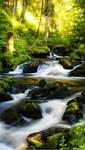 Гибкий настенный обогреватель Водопад (57х100 см)
