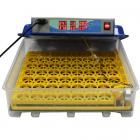 Инкубатор для яиц WQ-55 на 55 яиц с автоматическим переворотом (220В)
