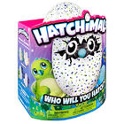 Игрушка Spin Master Hatchimals Дракоша (19100 drag-green)