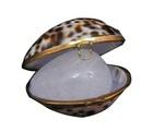 Натуральный кристаллический дезодорант (Tawas Crystal) в тихоокеанских раковинах и пакете Тигровые (65-70 г)