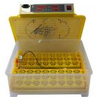 Инкубатор Biotorg WQ-48 Желтый