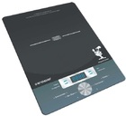 Настольная индукционная плита Kromax Endever IP-15